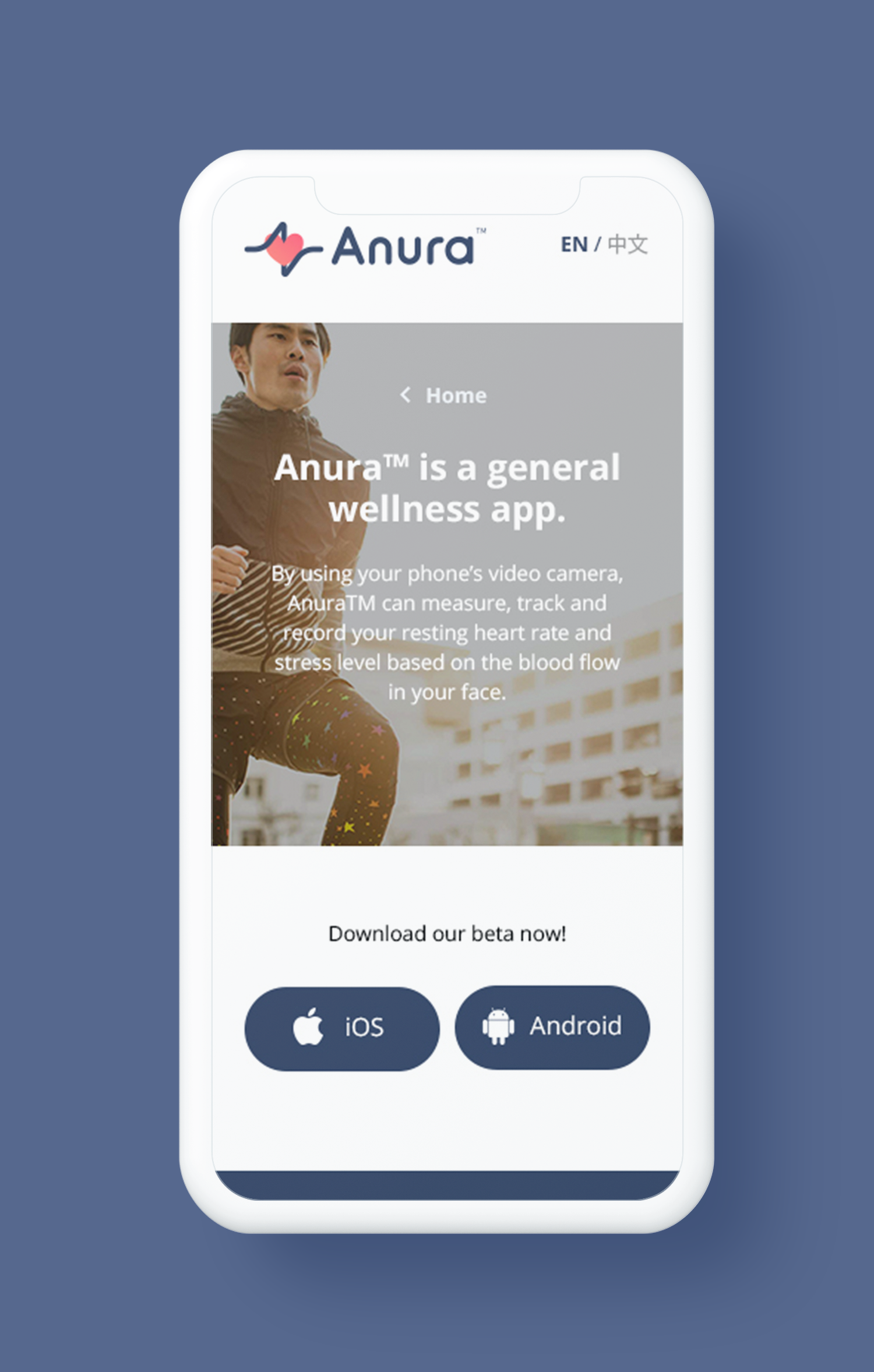 anura mobile copy